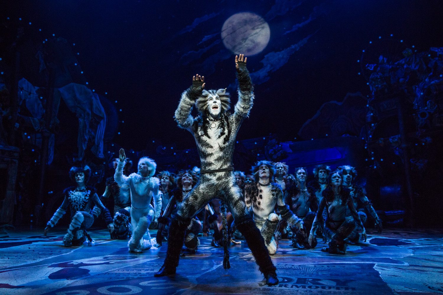 "Andy Huntington Jones as Munkustrap and Company in ""Cats"" on Broadway 2016. (Photo: Matthew Murphy)"