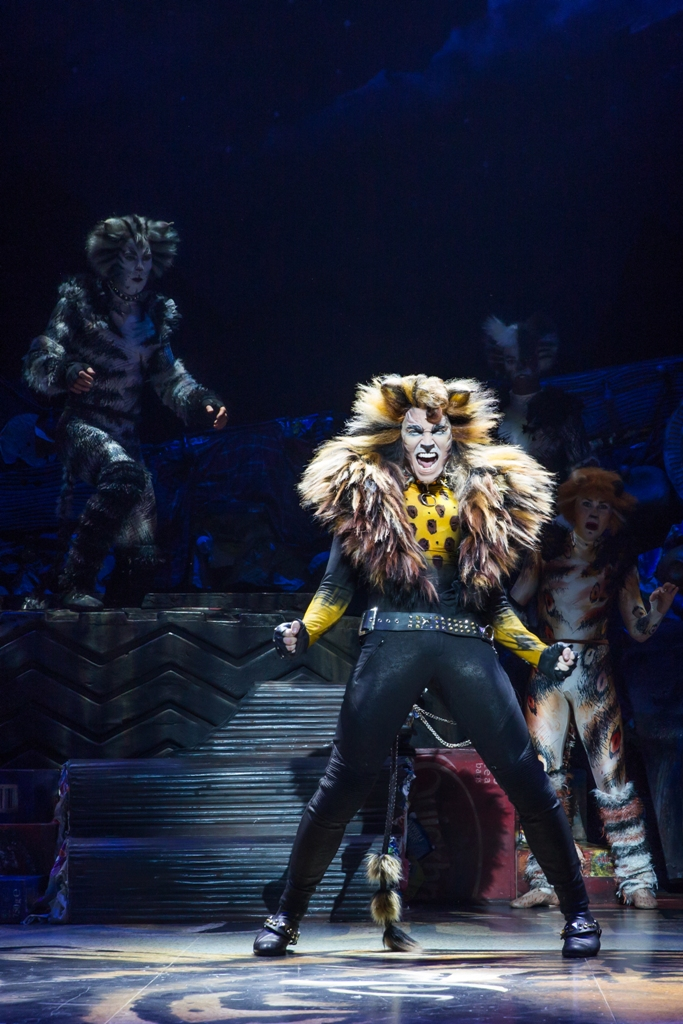 "Tyler Hanes as Rum Tum Tugger in ""Cats"" on Broadway. (Photo: Matthew Murphy)"