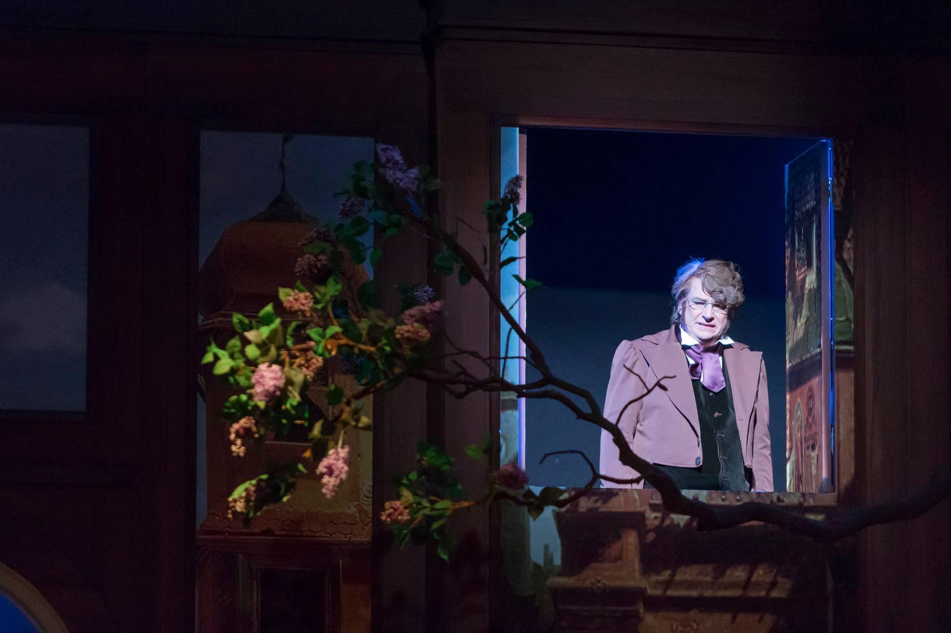 """André Riemer als Franz Schubert in """"Blossom Time."""" (Foto: Dirk Rückschloß/BUR-Werbung)"""